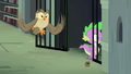 Owlowiscious hooting while Spike enters S4E23.png
