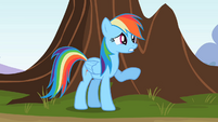Rainbow Dash -Doing here- S2E07