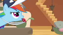 Rainbow Dash as if S2E22