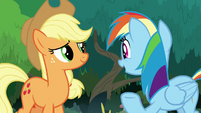 Rainbow Dash commending Applejack S8E9