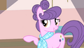 Suri 'from the Ponyville Knitters League' S4E08.png