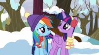 "Twilight and Rainbow ""ready for some winter fun?"" S5E5"