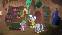 "Zecora ""the ailments you have aren't"" S8E11"