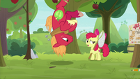 "Apple Bloom ""you ain't the Great Seedlin'"" S9E10"
