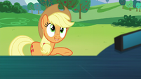 "Applejack ""I saw the real you"" S5E24"