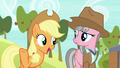 "Applejack ""well, she's the boss"" S7E5.png"