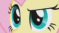 Close up of Fluttershy's eyes S1E07.png