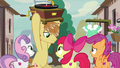 Cutie Mark Crusaders tell Feather Bangs he's too late S7E8.png