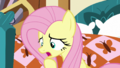 """Fluttershy """"You don't have any carrots?"""" S5E21.png"""