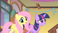 Fluttershy and awkward Twilight S01E22.png