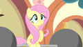 Fluttershy sitting on a barbell S4E24.png
