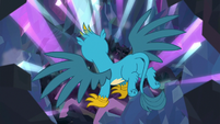 Gallus in a shrinking chamber S8E22