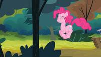Pinkie hopping S4E09