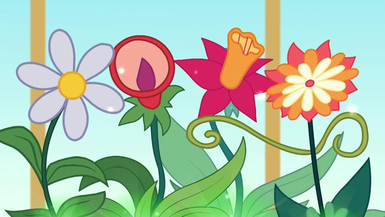 Flower Size Wiki Timiznceptzmusic