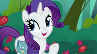 "Rarity ""I used to overpack a tad"" S8E13"