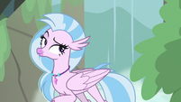 Silverstream in front of a waterfall S8E22
