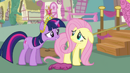 Twilight asks Fluttershy to help Rainbow Dash S03E13