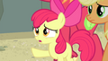 "Apple Bloom ""and what about your hip?"" S4E20.png"