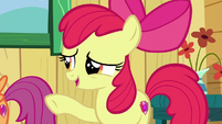 "Apple Bloom ""you don't need a symbol on your flank"" S6E19"