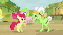 Apple Bloom and Applesauce dancing S3E8