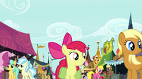 Apple Bloom in the Ponyville marketplace S7E13