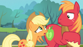 Applejack '...all this stuff wasn't gonna be...' S4E09.png