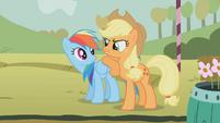 Applejack leaning on Rainbow Dash S01E13