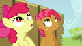 Babs and Apple Bloom looking up S3E08.png