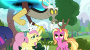 Discord appears over Fluttershy and Luster S9E26