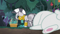Fluttershy collapses behind Zecora S9E18