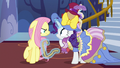 Fluttershy glares angrily at Rarity S7E14.png