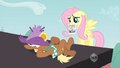 Fluttershy trying to find Applejack S2E14.png