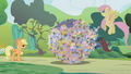 Parasprites being chased into a ball S01E10.png