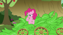 Pinkie Pie thinking S3E04