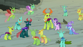 Ponies and changelings in a happy group S7E17.png