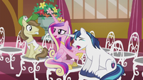 Princess Cadance -he always cries at weddings- S5E9