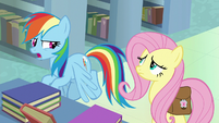"Rainbow Dash ""this is totally different"" S9E21"
