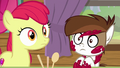 Apple Bloom and Pip hear Rumble's voice S7E21.png