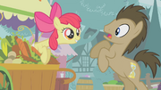 Apple Bloom surprises Dr. Hooves S1E12