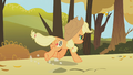 Applejack running view from behind S01E13.png