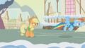 Applejack tells Rainbow Dash to melt the snow S1E11.png