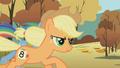 Applejack vs Rainbow Dash S01E13.png