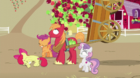 Apples about to fall onto Big Mac S6E4
