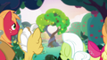 Bright Mac and Pear Butter's tree of love S7E13.png