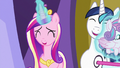 Cadance and Shining Armor laughing amused S7E3.png