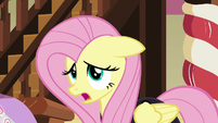 "Fluttershy ""taking all the fun out of it"" S5E21"