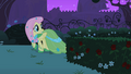 Fluttershy looking behind S01E26.png