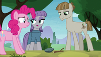 Maud Pie -don't be rude- S8E3