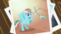 Picture of Rainbow Dash and the hummingbird fencing S2E07.png