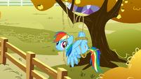 Rainbow tied up S1E13